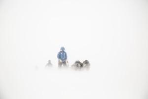 Polar 2015