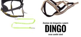DINGO Zestaw do biegania z psem + szelki sled
