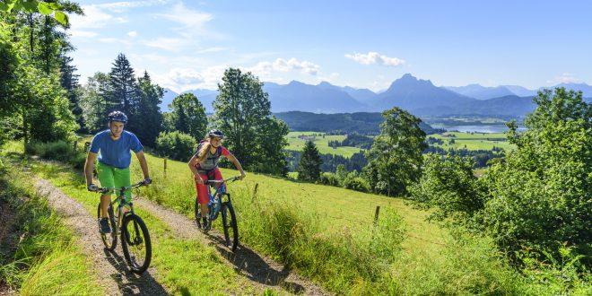 Przygotowania do rowerowej podróży – góry, szosa, miasto
