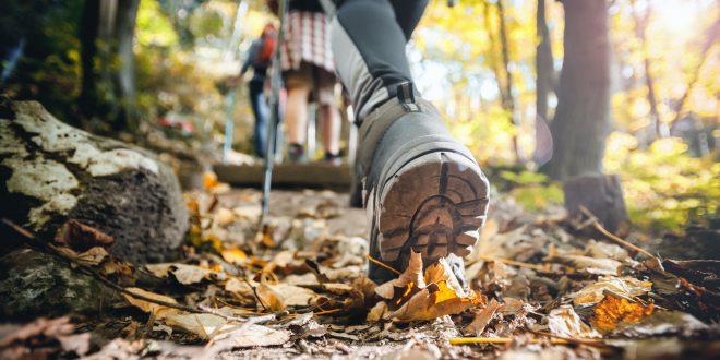 Sport jesienią. Jak dobrać odzież i sprzęt?