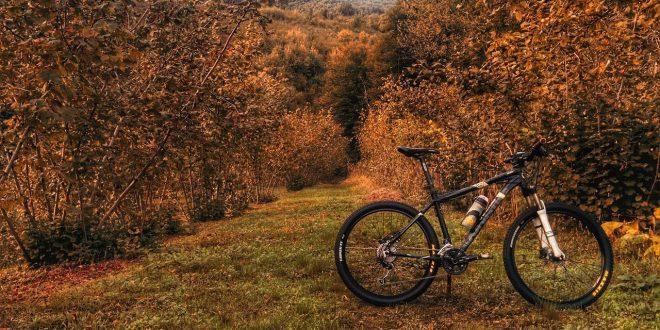 Niezbędne akcesoria kolarza na zimę czyli trenażery rowerowe, zimowe opony i błotniki.